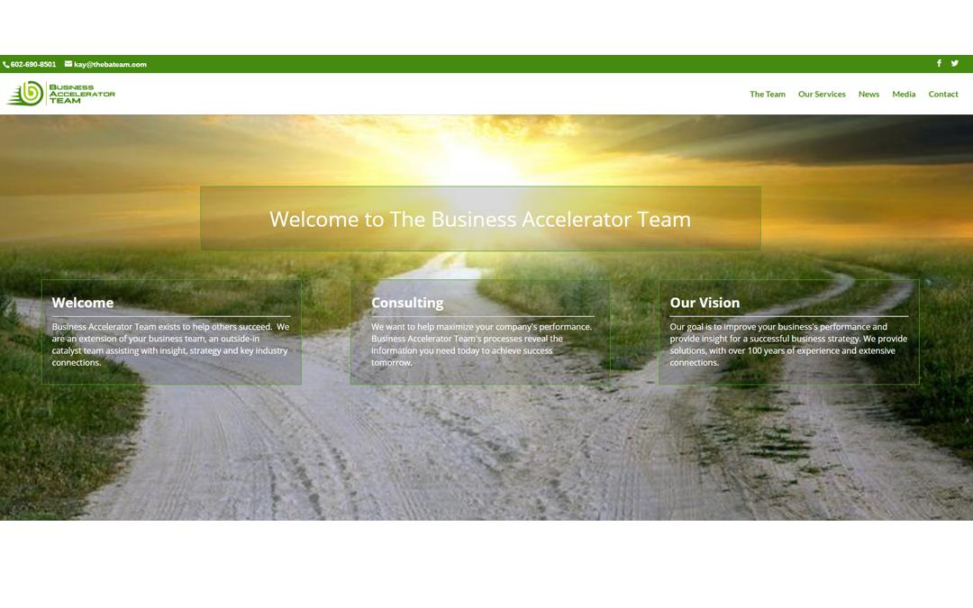 Business Accelerator Team